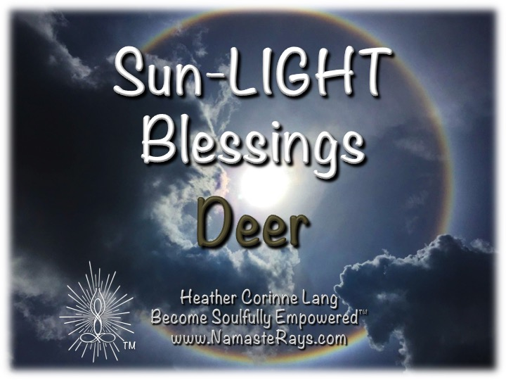 Sun-LIGHT Blessings ~ Deer