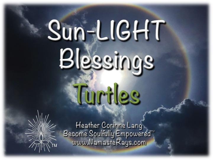 Sun-LIGHT Blessings ~ Turtle