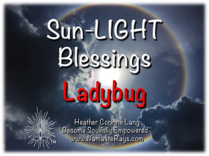 Sun-LIGHT Blessings ~ Ladybug