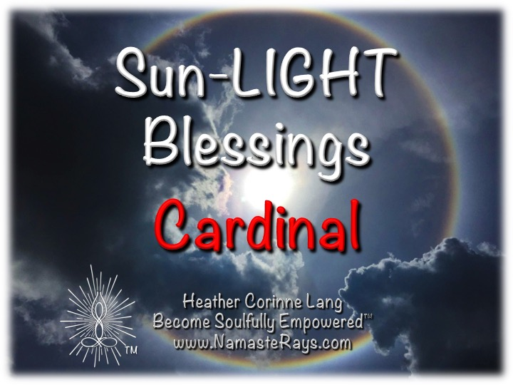 Sun-LIGHT Blessings ~ Cardinal